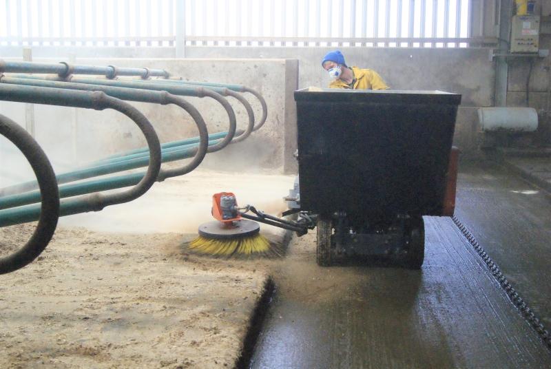 ALPHA Skid Steer Working